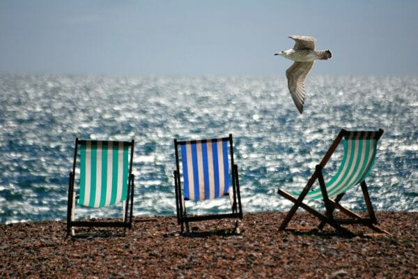 Chairs on beach with bird flying by.